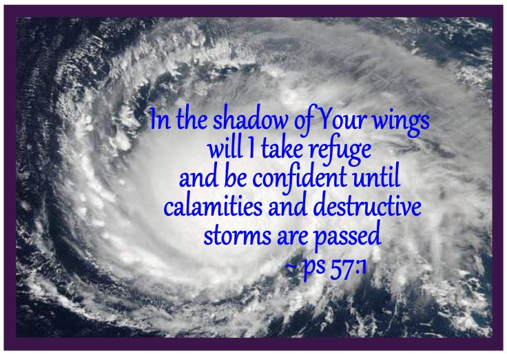 hurricane irma-page001