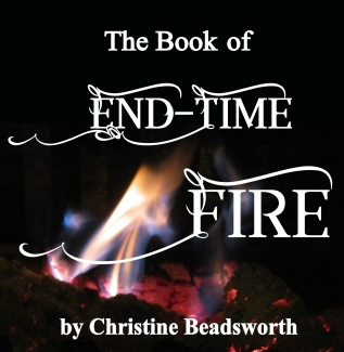 front cover endtime fire small